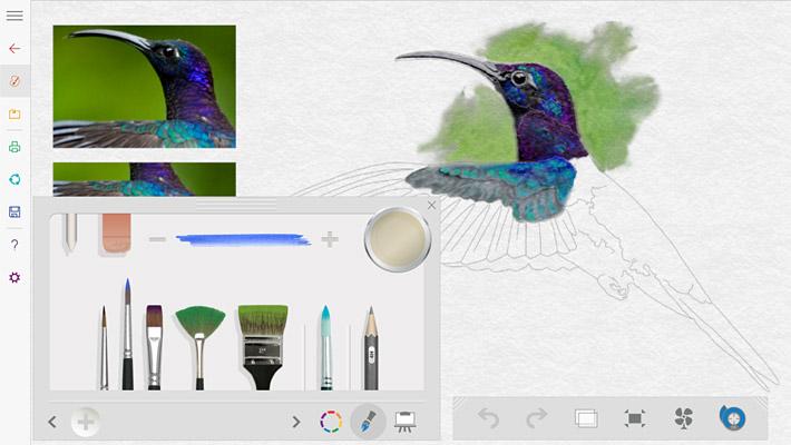 すると、ハチドリ(?)の水彩画が途中まで描かれています。下書きも描かれていますので、こちらで「Fresh Paint」の練習をすることができます。油絵やペン画も同様に練習できますので、試してみましょう。